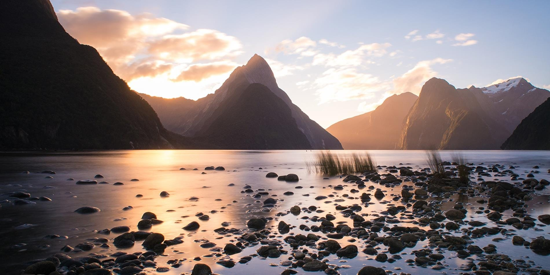 Discover New Zealand With Us